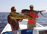 Baja Dorado Fishing - Couples Trip Wrap Up