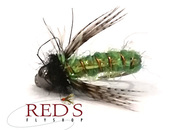 Deadliest Nymphs for Spring Caddis Hatches