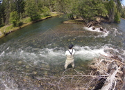 Deadline Extended!  Support the Naches River