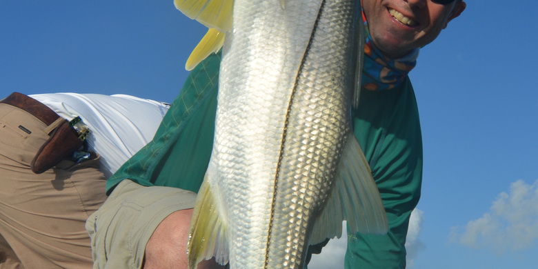 Fly Fishing for Snook in Ascension Bay Mexico