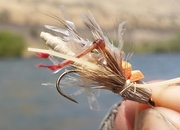 Guns, Bows, Fly Rods and Heroes - Yakima River Fishing Report -