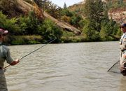 Klickitat River Spring Chinook and Steelhead