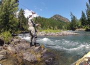 Naches River Conservation Measure - URGENT!