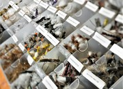A NEW Way to Order Flies Online - The Deadly Dozen!