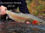 NOW BOOKING! - Klickitat River Deluxe Riverside Camp