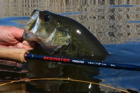 Bass trout combo fishing reports blog red 39 s fly shop for Bass pro shop fly fishing