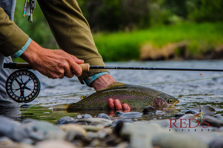 An Introduction to Fly Fishing