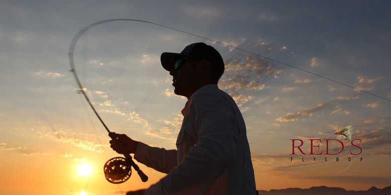 Saltwater Fly Fishing Trips to Baja Mexico