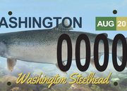 Sign the Petition for a NEW Steelhead License Plate