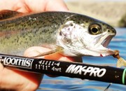 Trout Spey Podcast with Tom Larimer