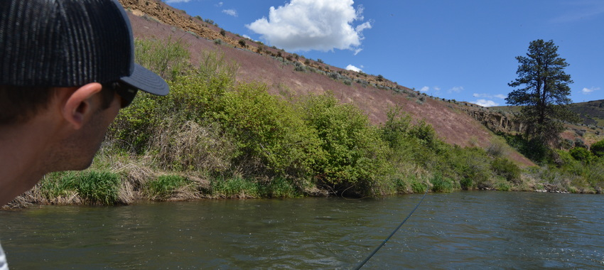 Two Critical Dry Fly Fishing Tips for the Mother's Day Hatch